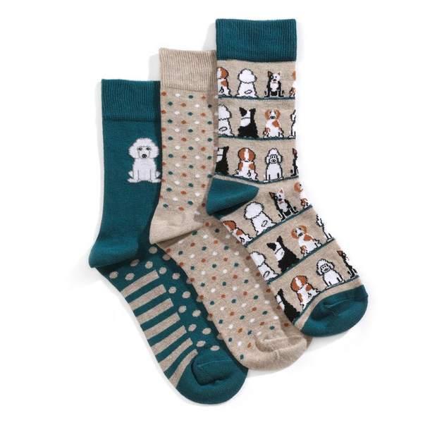 Image for Pooch Socks from HotterUK