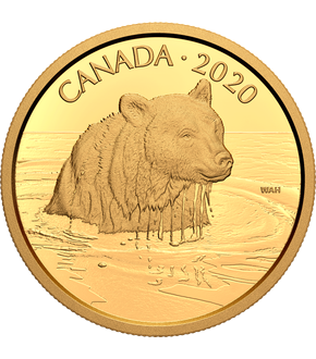 "Kanada 2020 Goldmünze Canadian Wildlife Portraits ""Grizzly Bär"""