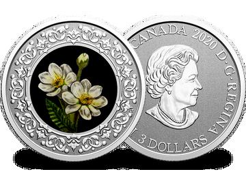 Kanadische 3 Dollar Silbermünze