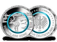 Bundesrepublik, Subpolare Zone, 5 Euro, 2020 J, st