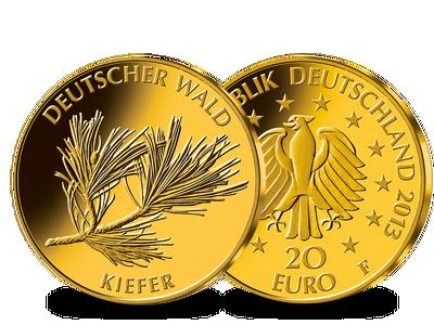 "Die 20-Euro-Goldmünze ""Kiefer"""
