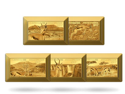 Premium Size Gold Bar Springbok Collection