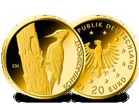 Bundesrepublik, Schwarzspecht, 20 Euro, 2021, st