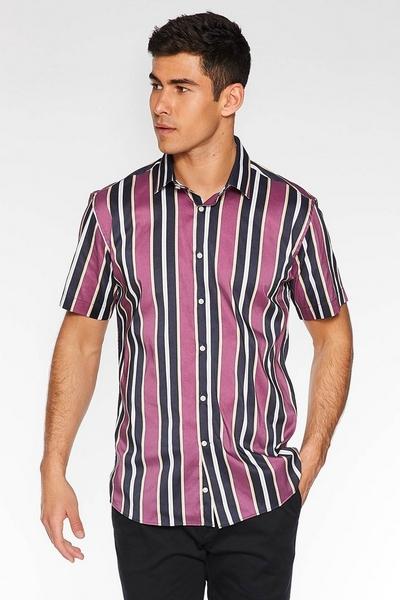 Short Sleeve Striped Shirt in Purple