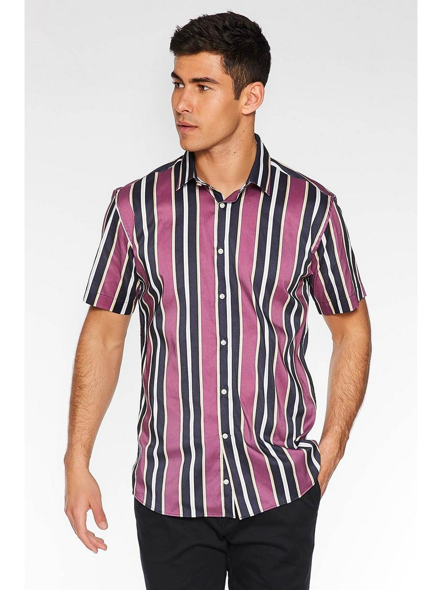 Short Sleeve Striped Shirt in Purple