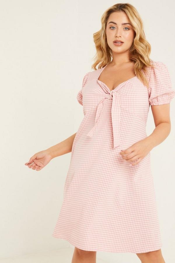 Curve Pink Gingham Skater Dress