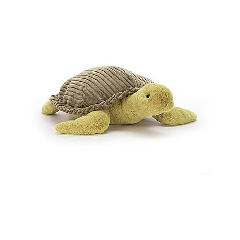 Terence Turtle, ${color}