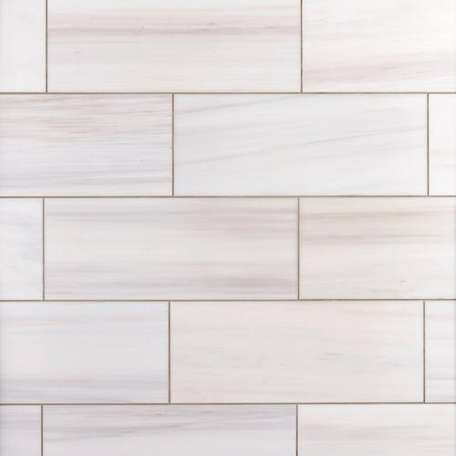 Dolomite Polished Marble Tile 8 X 20 100698125 Floor And Decor