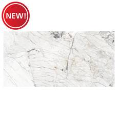 New! San Matias Polished Porcelain Tile