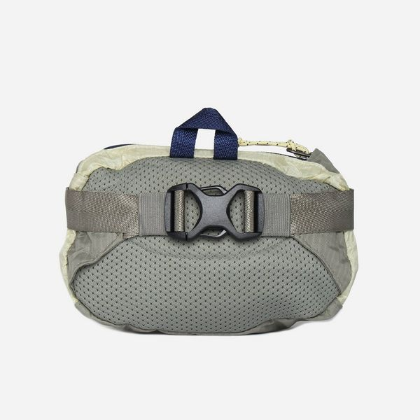 Patagonia Travel Mini Hip Pack Bag