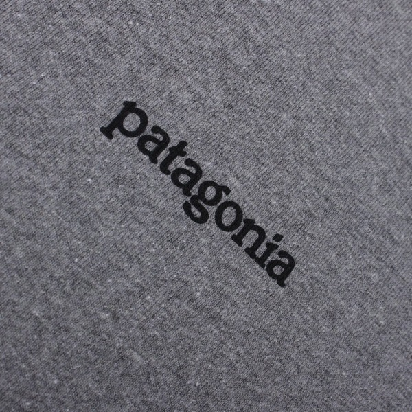 Patagonia Fitz Roy Horizons Short Sleeve T-Shirt
