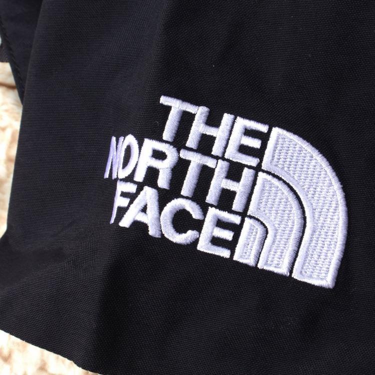The North Face 1994 Seasonal Retro Mountain Light Jacket