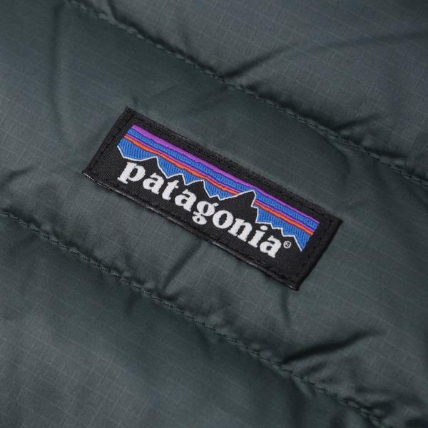 Patagonia Down Sweater Hooded Jacket