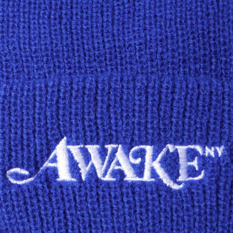 Awake NY Loose Gauge Logo Beanie