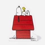 Peanuts House Money Box