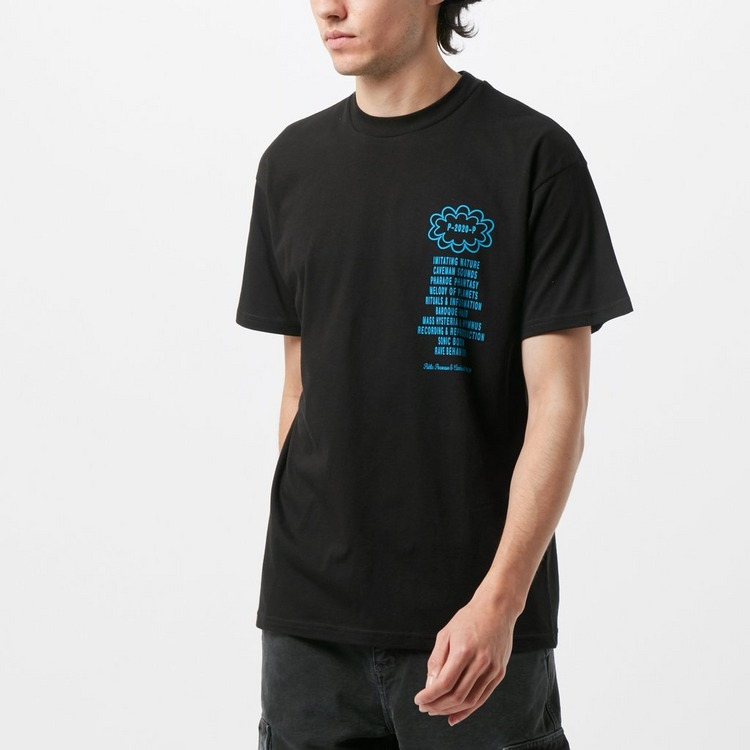 Carhartt WIP x Relevant Parties Public Possession T-Shirt