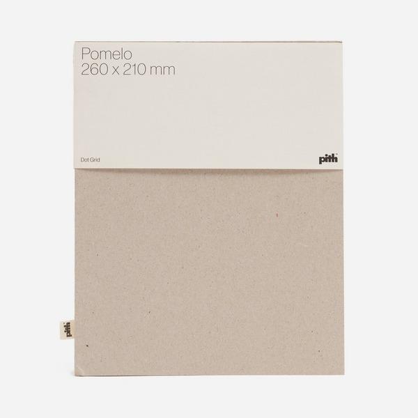 Pith Pomelo Dot Grid Notebook