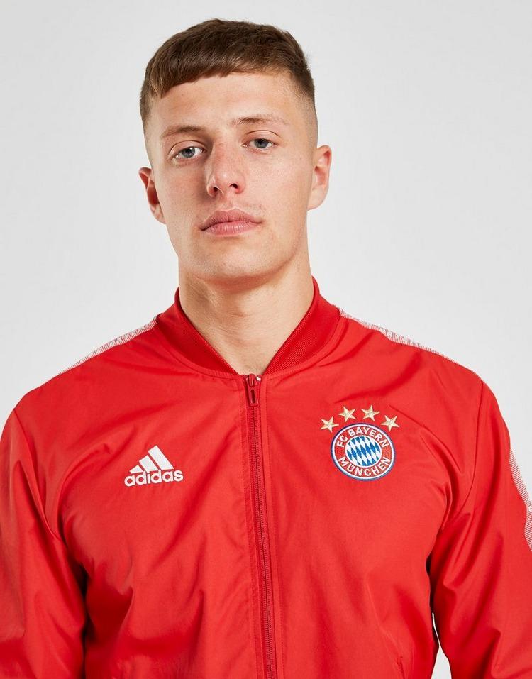 adidas FC Bayern München Anthem Jacke Herren