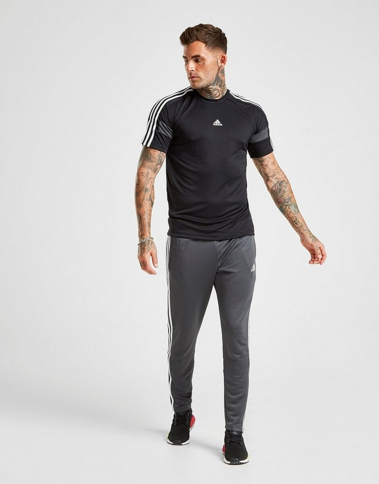 adidas T-Shirt Match Manches Courtes Homme