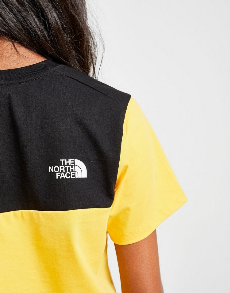 The North Face Crop Panel Logo T-Shirt