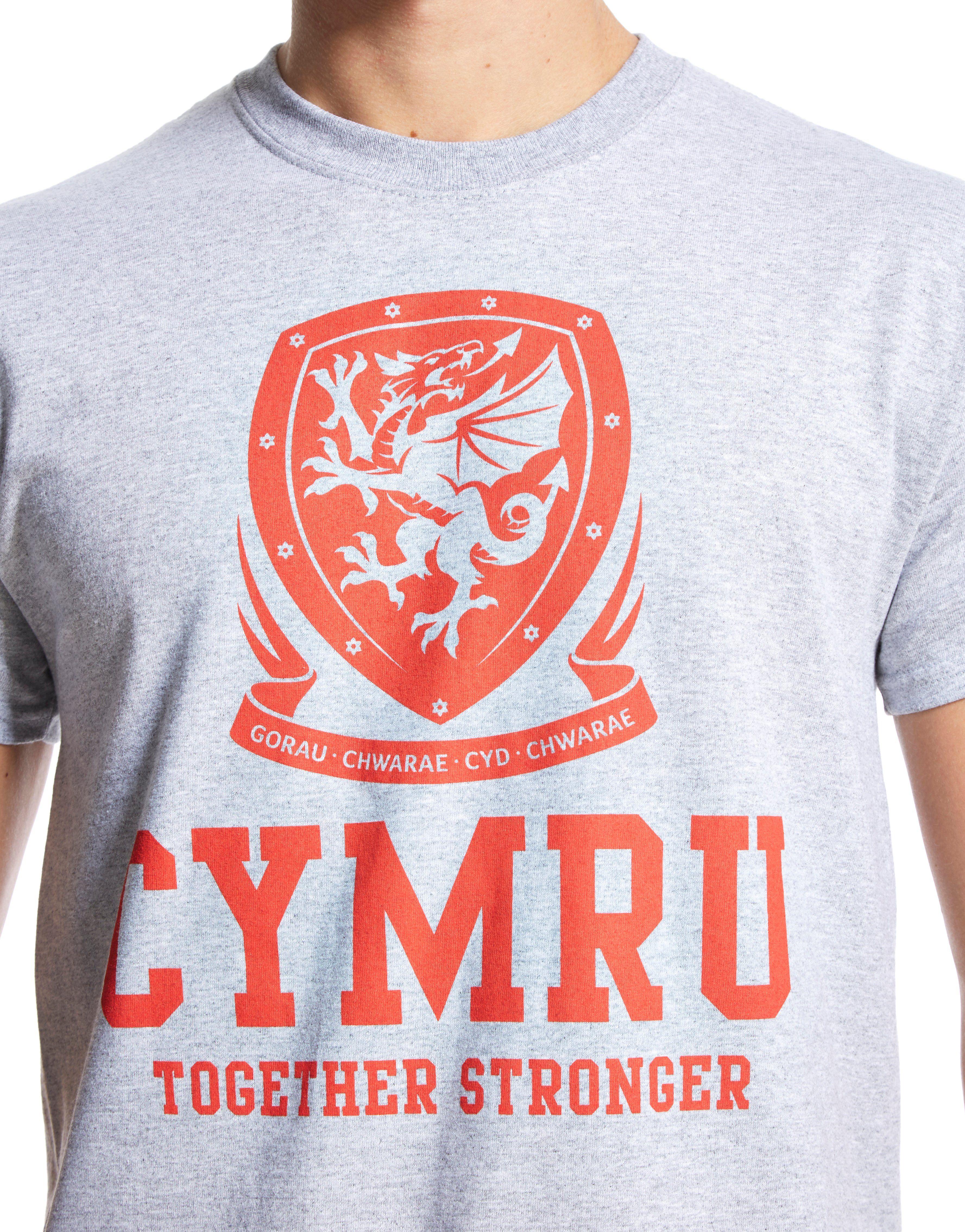 Official Team Wales Cymru T-Shirt