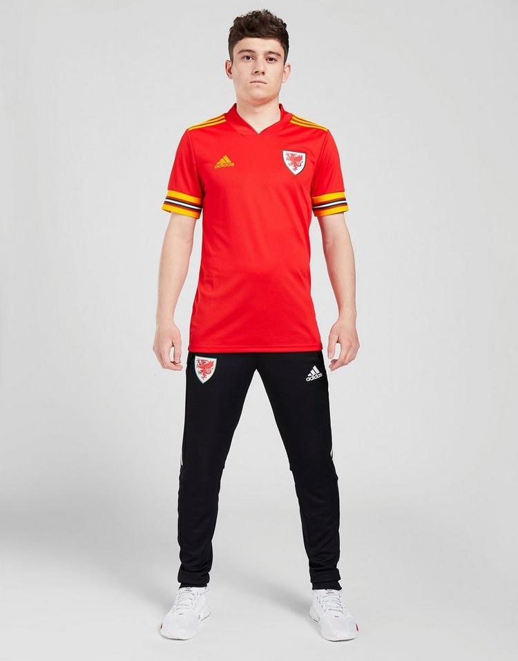 adidas camiseta selección de Gales 2020 1.ª equipación