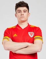 adidas Wales 2020 Hjemmebanetrøje Herre