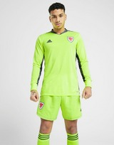 adidas Wales 2020 Home Goalkeeper Shirt