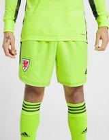 adidas Wales 2020 Home Goalkeeper Shorts