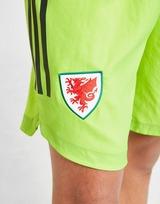 adidas Wales 2020 Home Goal Keeper Shorts Junior