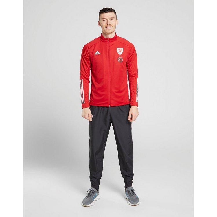 adidas Wales Condivo 20 Presentation Jacket