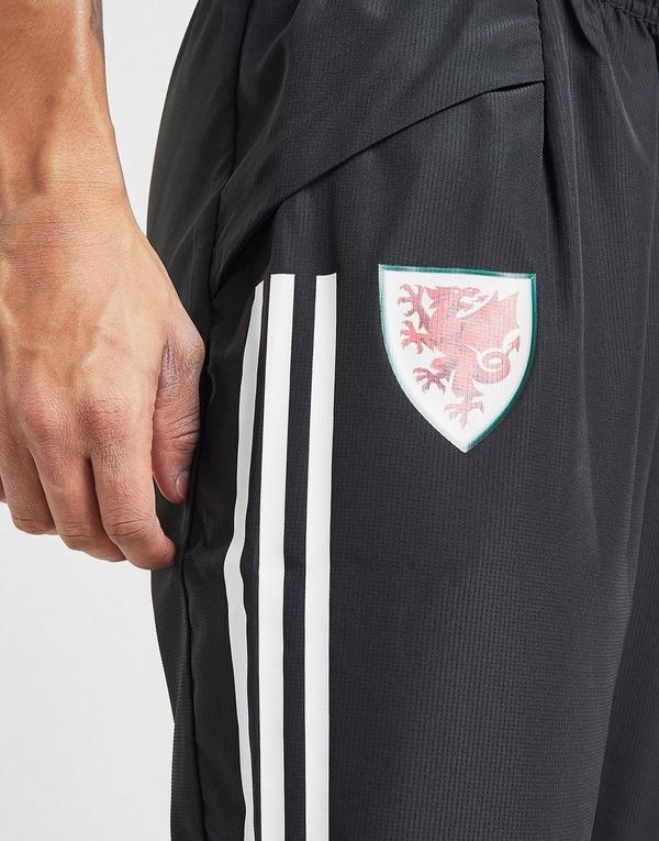 adidas Wales Condivo 20 Presentation Pants