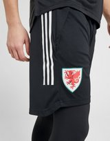 adidas Wales Condivo 20 2-in-1 Shorts