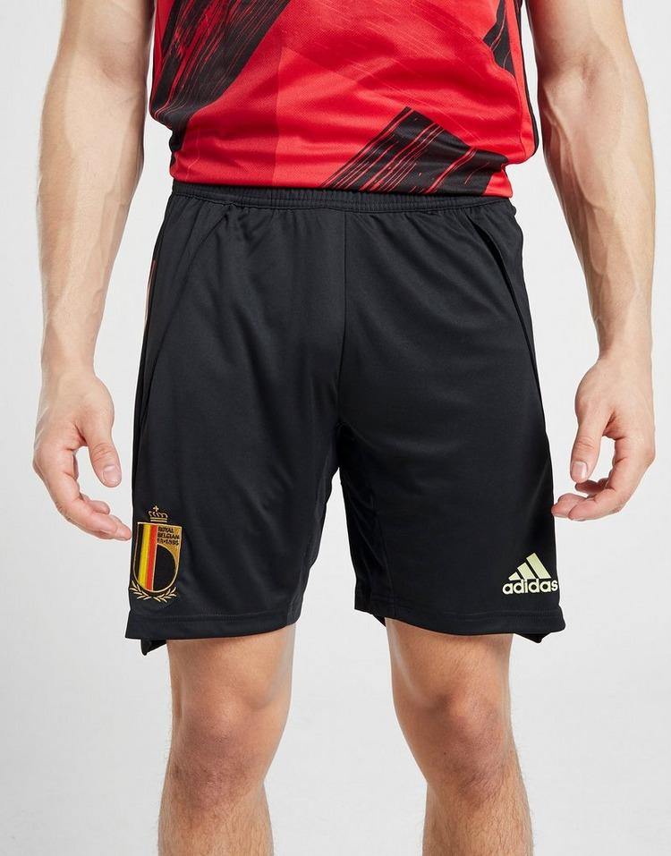 adidas Belgium Training Shorts