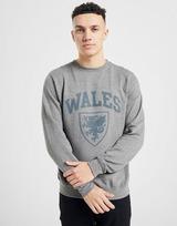 Official Team Wales Crew Sweatshirt
