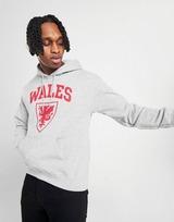 Official Team Chandail à capuche Pays de Galles Homme