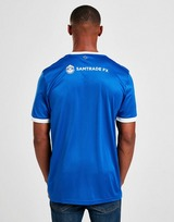adidas Cardiff City FC 2020/21 Home Shirt