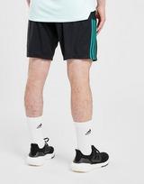 adidas Celtic FC Training Shorts