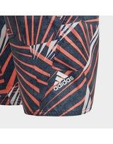 adidas Performance Board Shorts