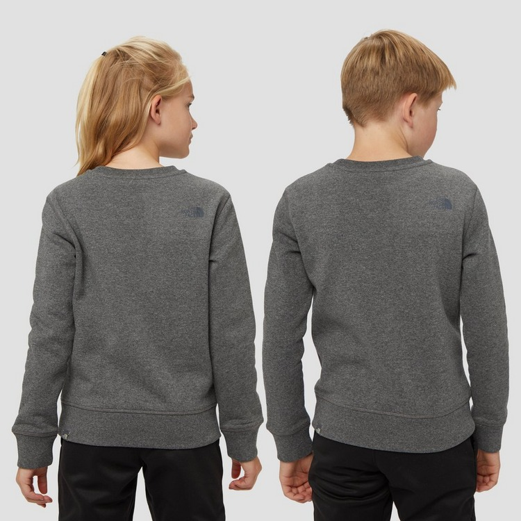 THE NORTH FACE BOX CREW SWEATER GRIJS KINDEREN