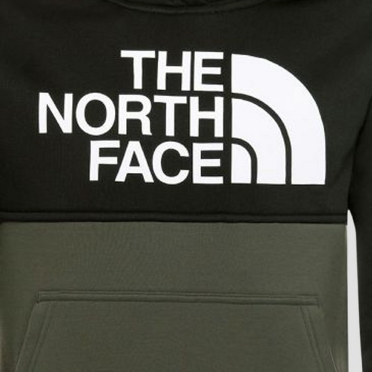 THE NORTH FACE SURGENT BLOCK TRUI GROEN KINDEREN