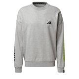 ADIDAS The 3-Stripes Graphic Sweatshi