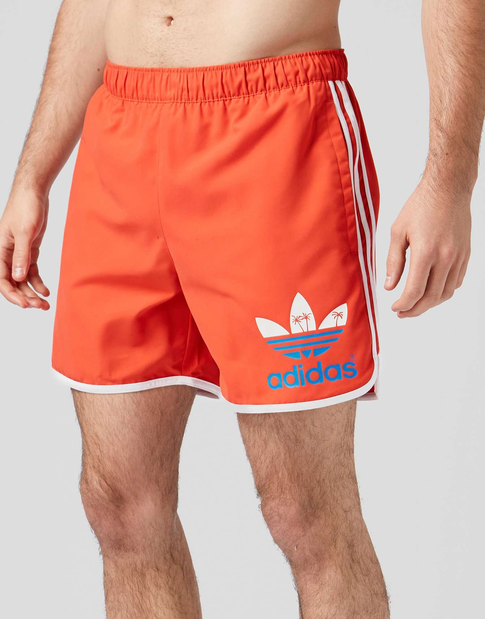 05939b1d1d adidas Originals Island Swim Shorts | scotts Menswear