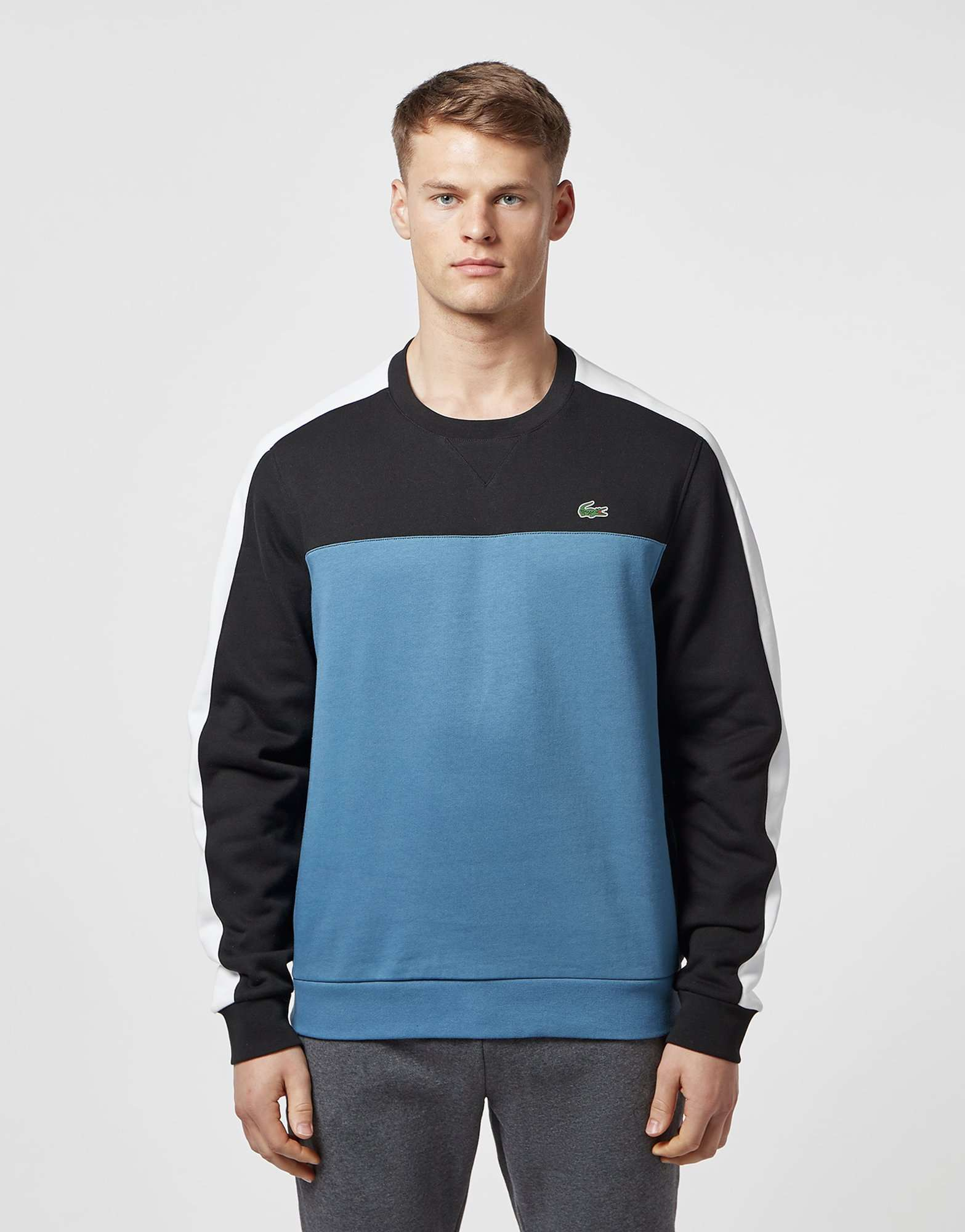 Lacoste Colour Block Crew Sweatshirt