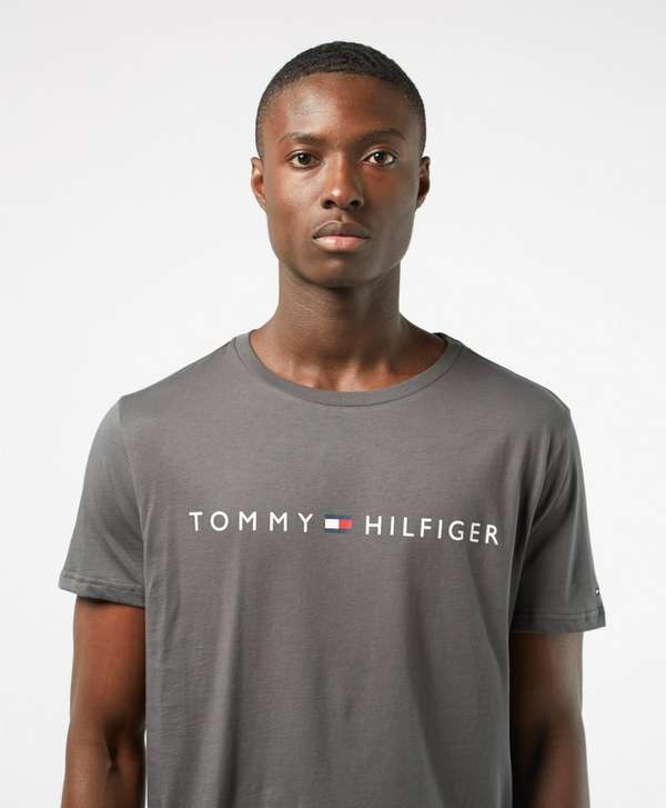 Tommy Hilfiger Underwear Flag Logo Short Sleeve T-Shirt