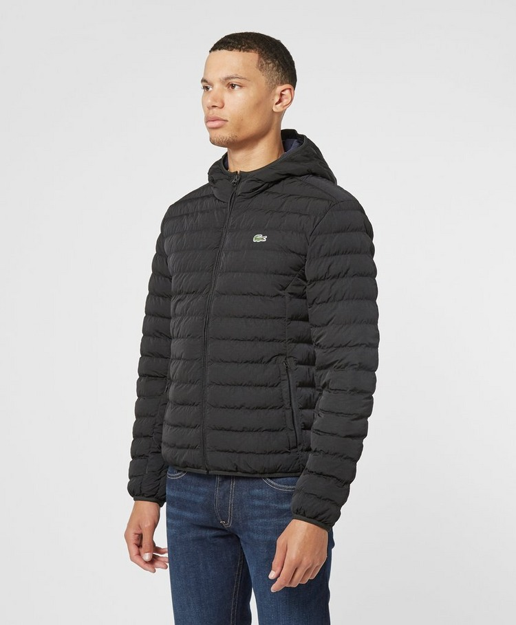 Lacoste Padded Hooded Jacket