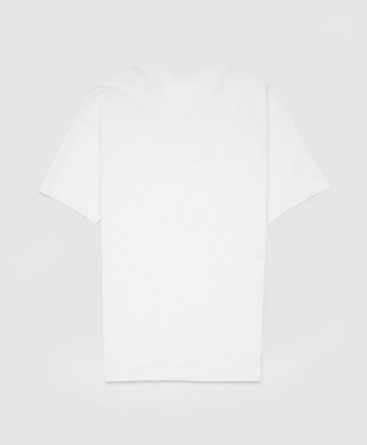 Napapijri Tribe Box T-Shirt