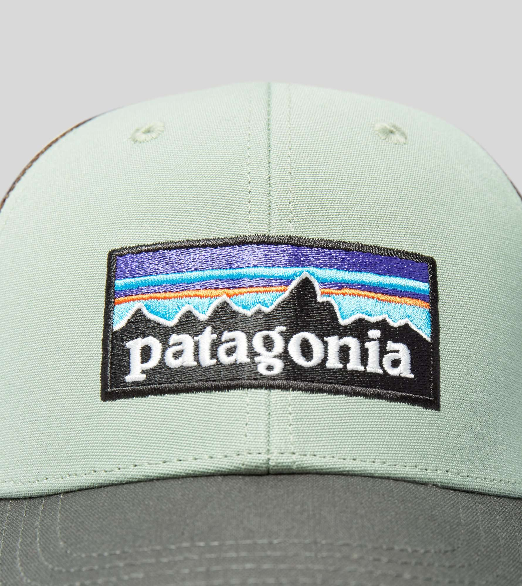 Patagonia P-6 LoPro Trucker Cap