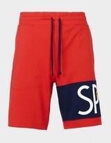 Polo Ralph Lauren Block Shorts