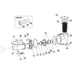 Waterway Econo-Flo VSA Variable Speed Pump